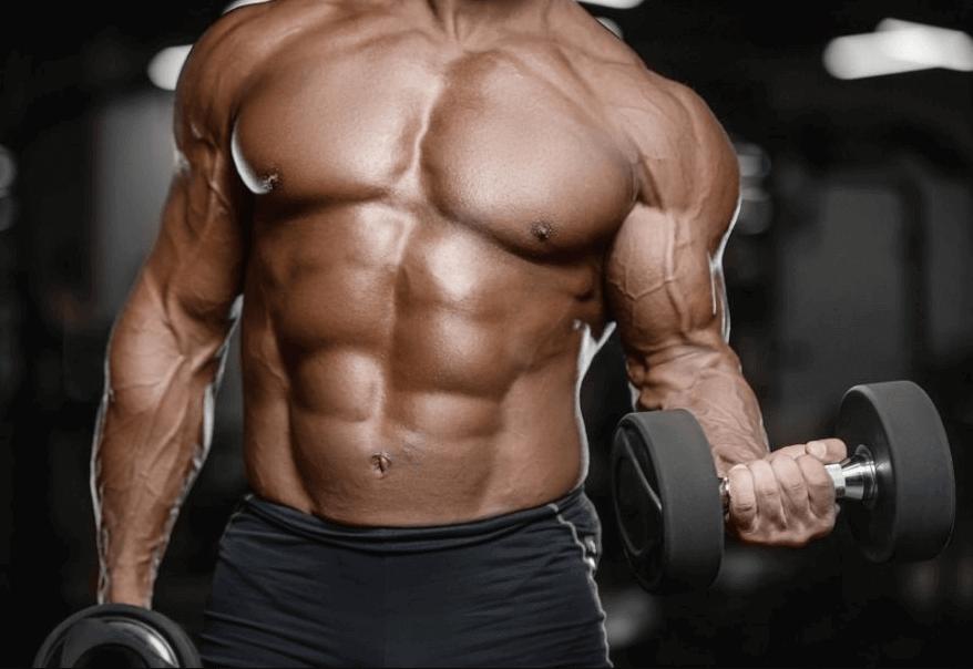 Comment prendre du muscle le plus rapidement possible photo